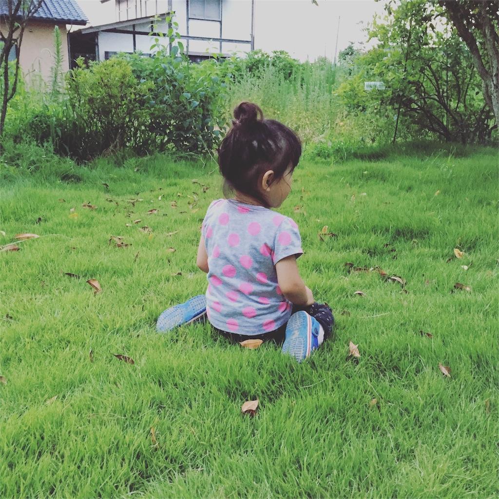 f:id:ayuka_hit:20160713085514j:image