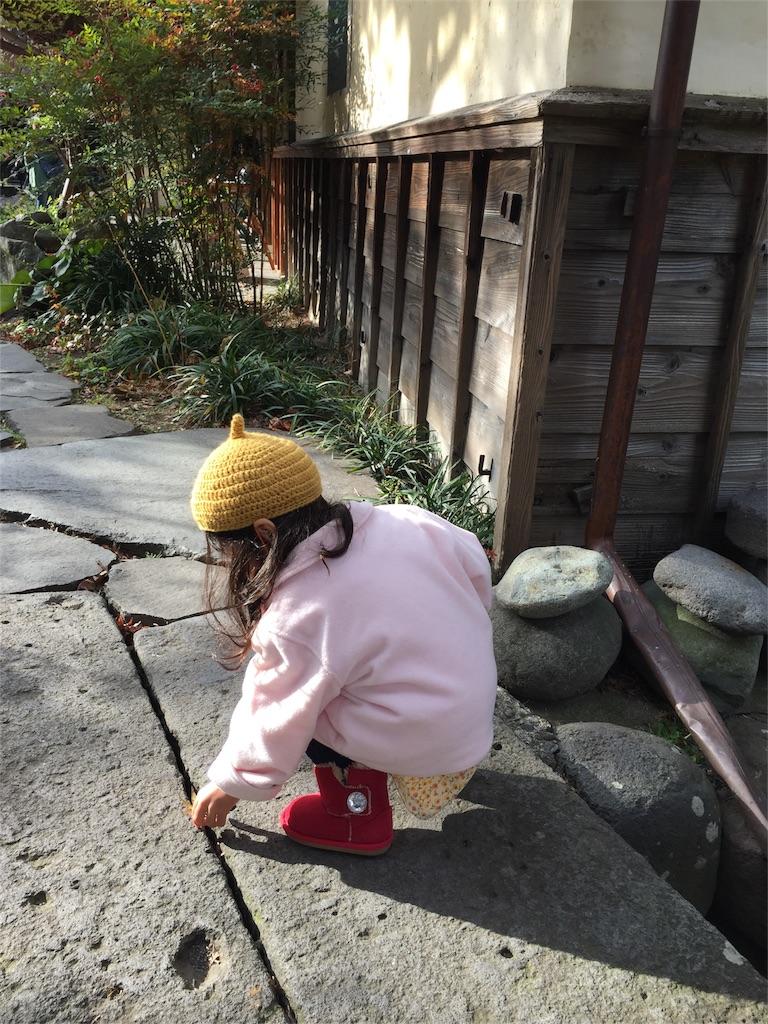 f:id:ayuka_hit:20161128090418j:image