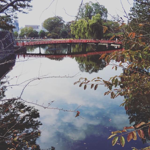 f:id:ayuka_hit:20181019160758j:image