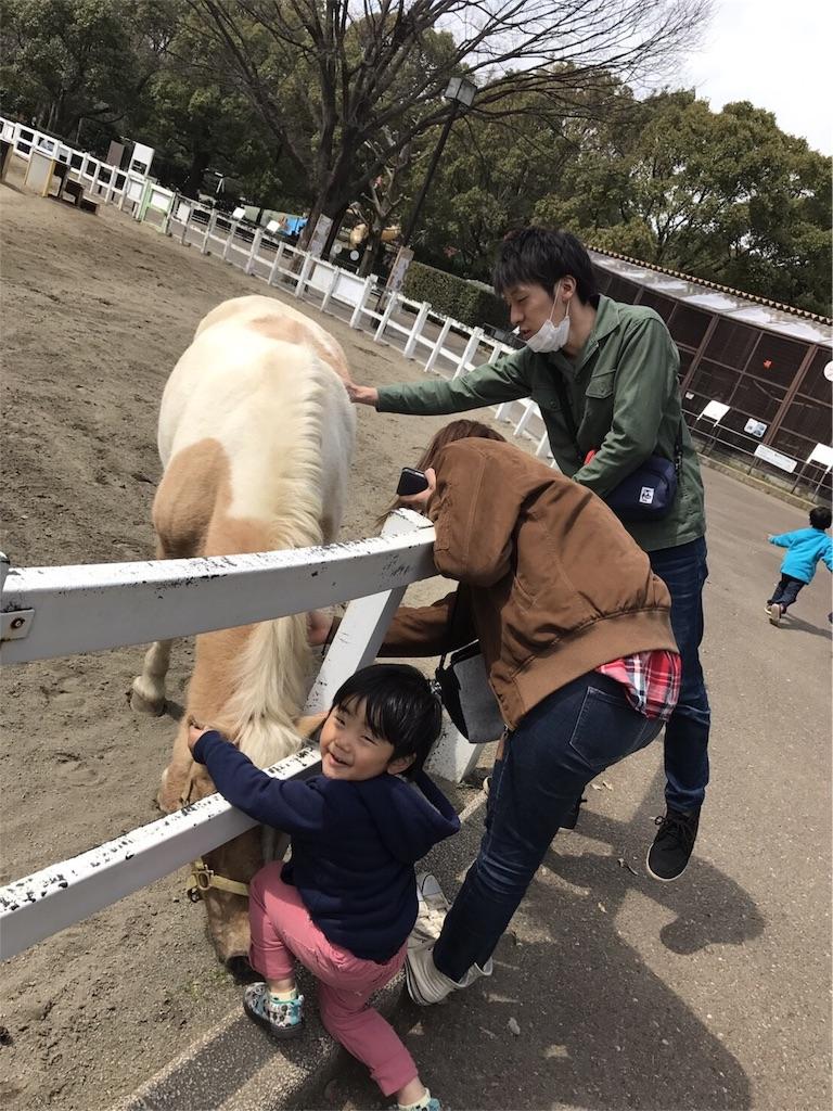 f:id:ayukasuzuki:20170324215614j:image