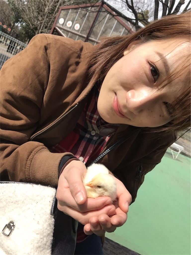f:id:ayukasuzuki:20170324215824j:image