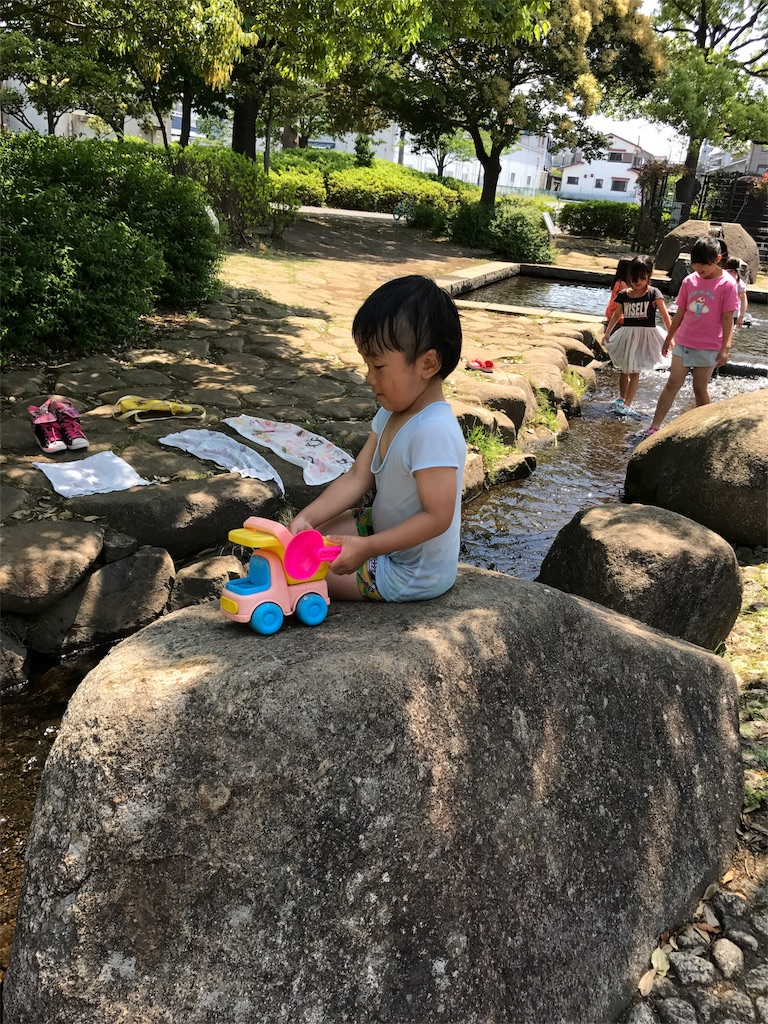 f:id:ayukasuzuki:20170525000340j:image