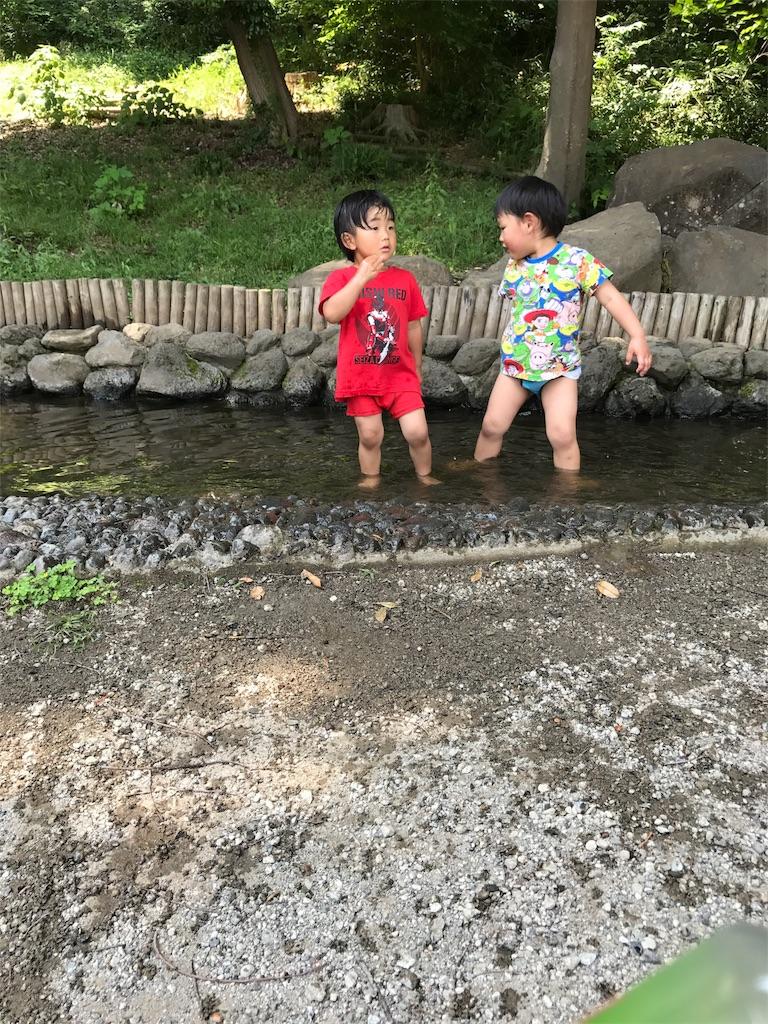 f:id:ayukasuzuki:20170531130849j:image