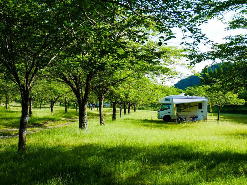 コルドリーブスinキャンプ場