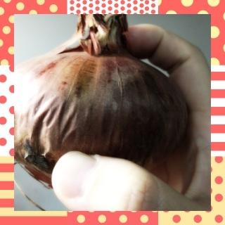 f:id:ayumi2007:20210321191347j:plain