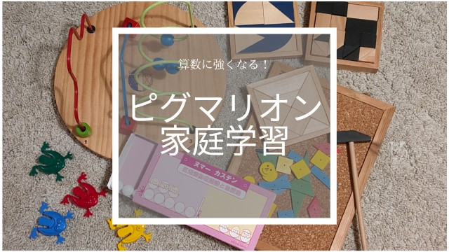 f:id:ayumi_dwe:20200429032153j:plain