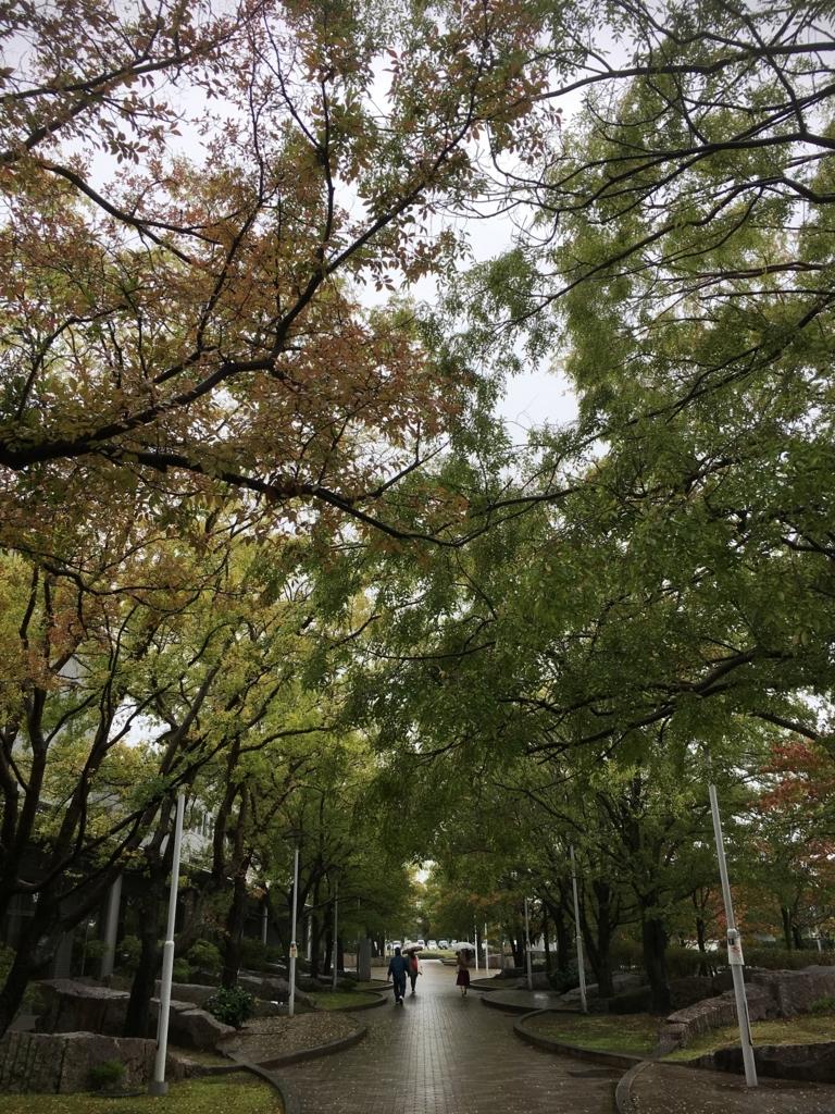 f:id:ayuminokuni:20171019224752j:plain