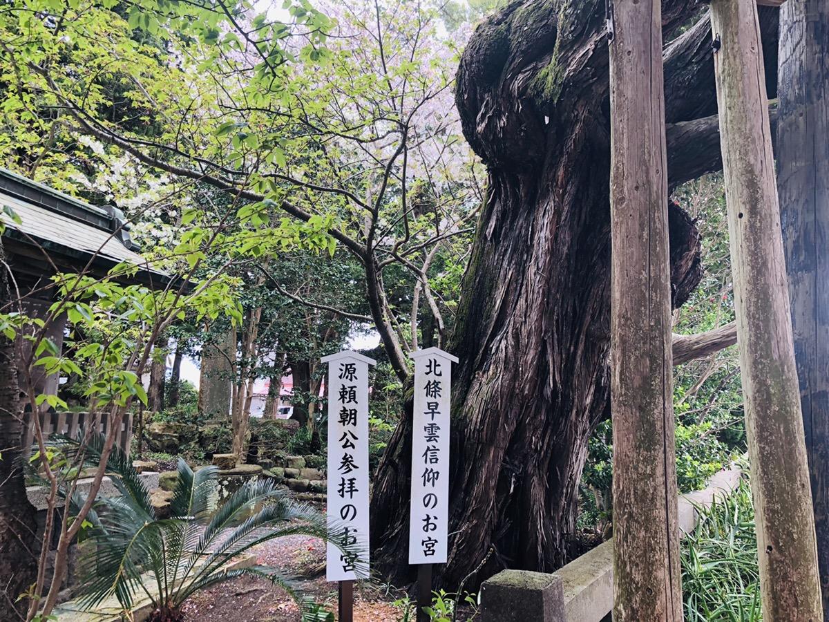 f:id:ayumuchonchang:20190507231810j:plain