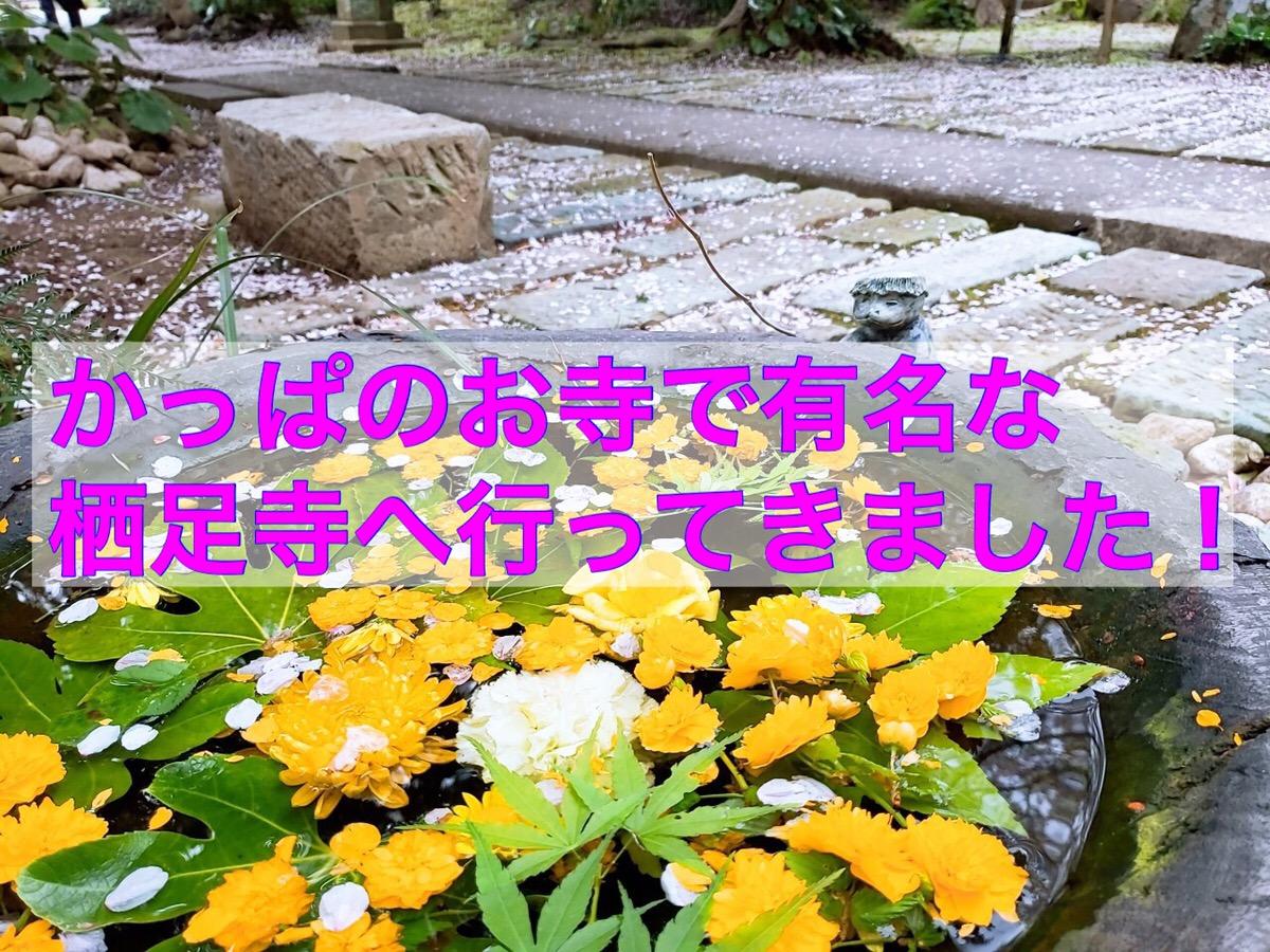 f:id:ayumuchonchang:20190514012900j:plain