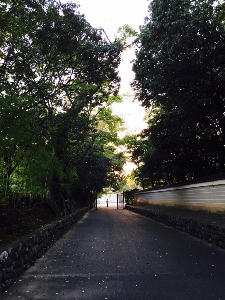 f:id:ayumusakui0623:20171013125246j:plain