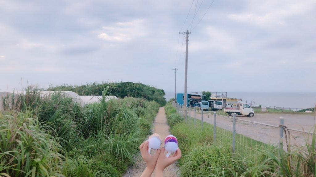 f:id:ayuteni0818:20180626005514j:plain