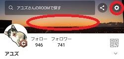 f:id:ayuzu0707:20210505205348j:plain