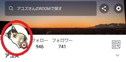 f:id:ayuzu0707:20210505205403j:plain