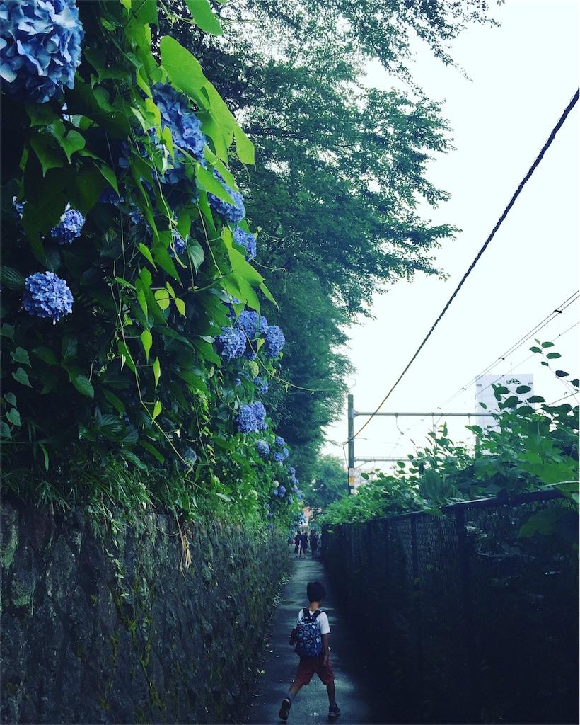f:id:azicoyoga:20170626064912j:image
