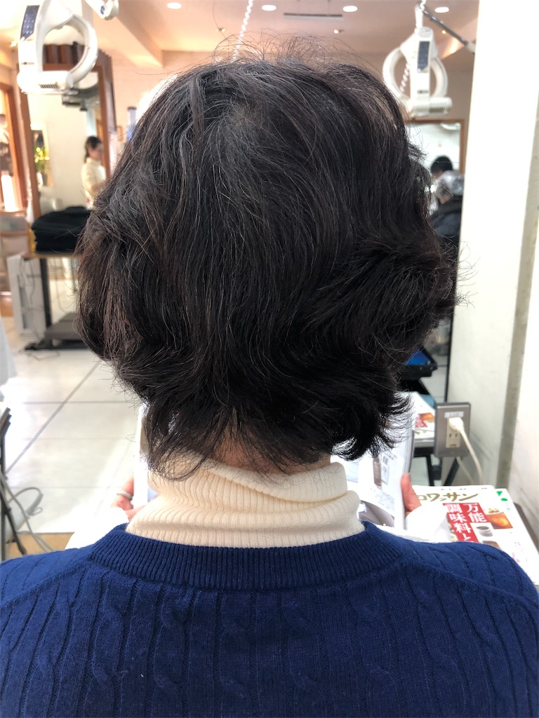 f:id:azkawagoe:20190201215139j:image