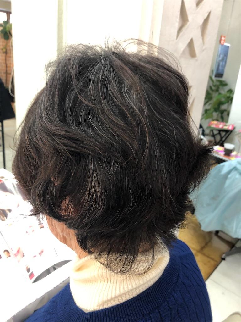 f:id:azkawagoe:20190201215156j:image