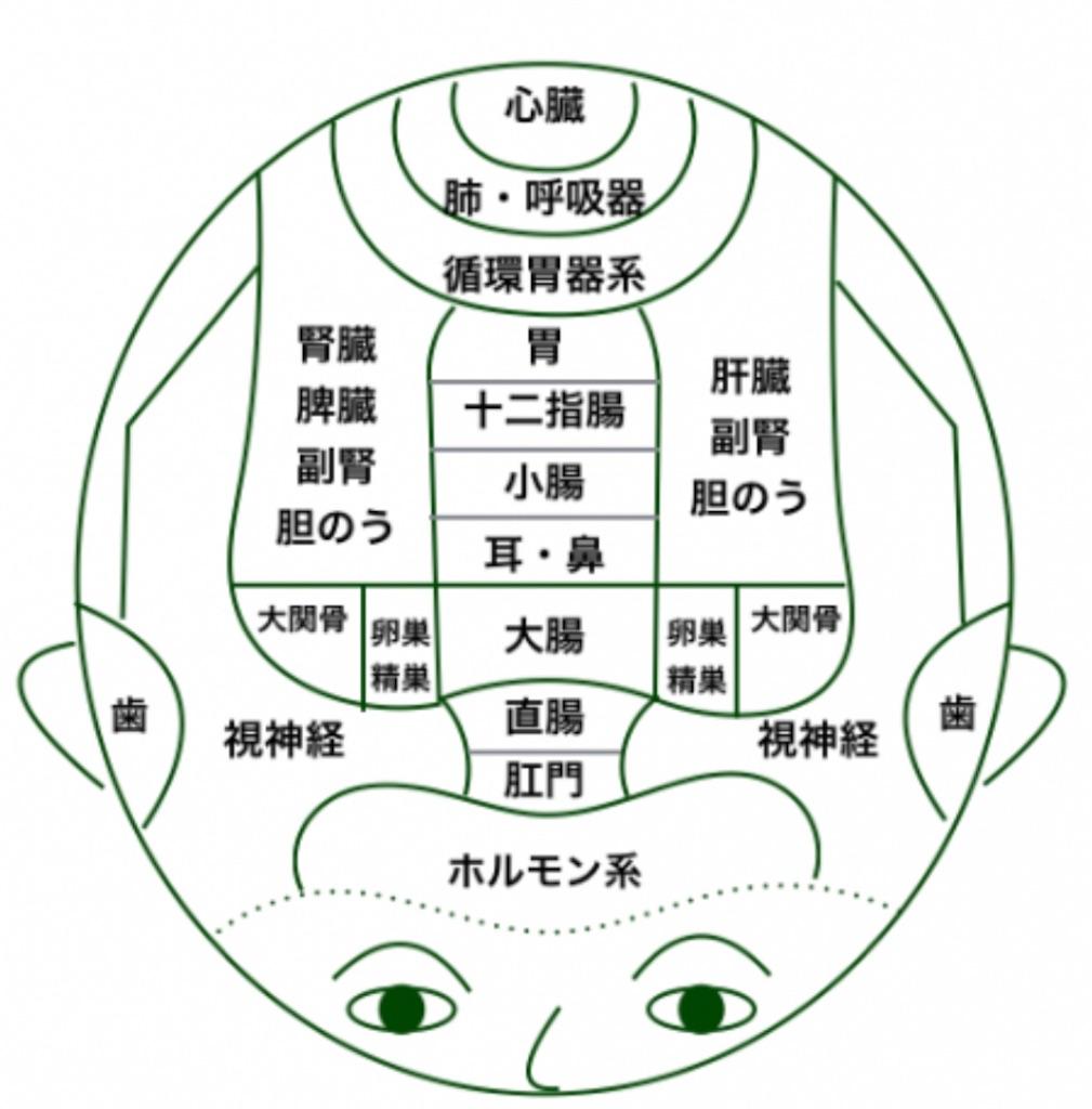 f:id:azkawagoe:20210402143638j:image