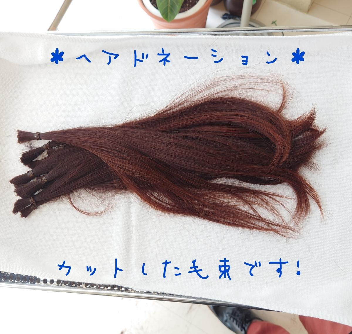 f:id:azkawagoe:20210514111729j:plain