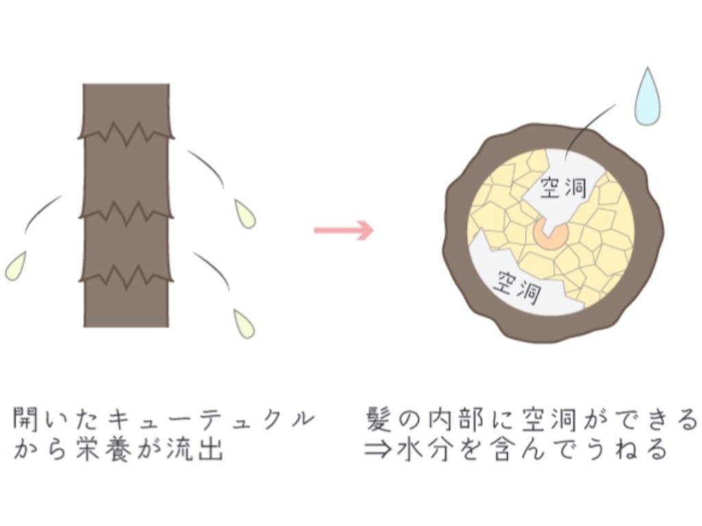 f:id:azkawagoe:20210609213428j:image