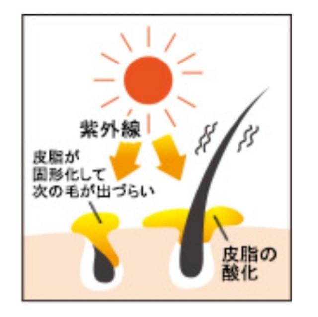 f:id:azkawagoe:20210714121619j:image
