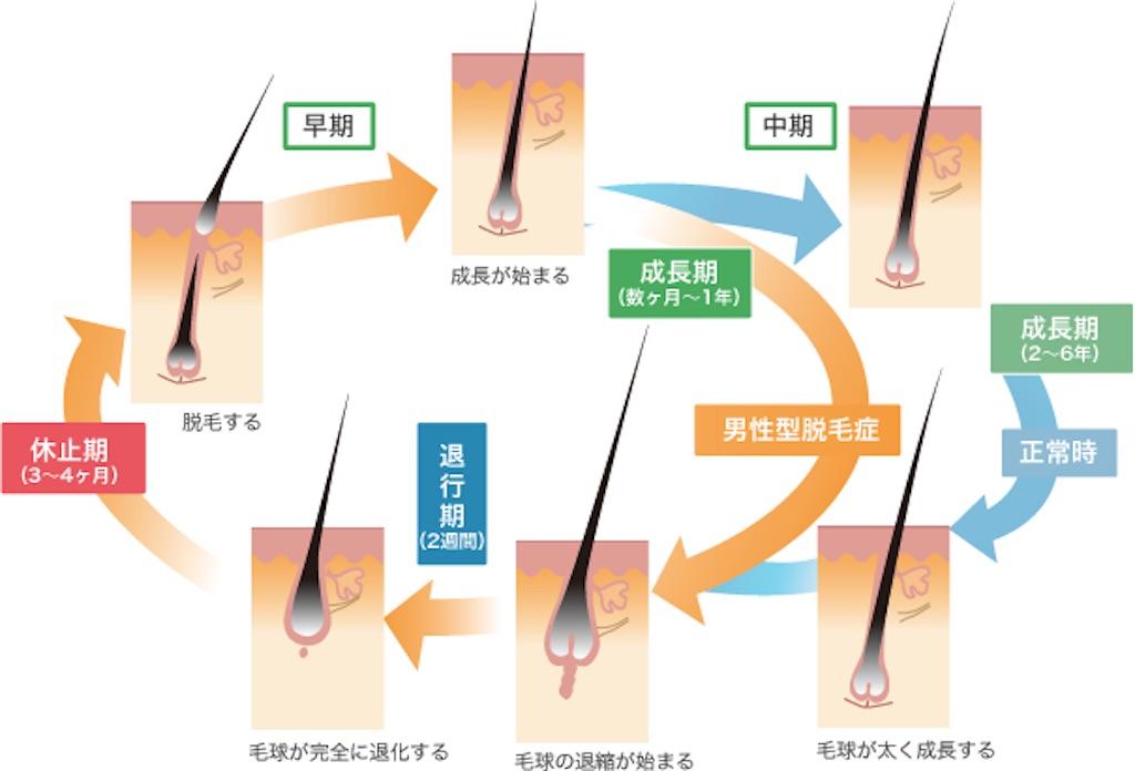 f:id:azkawagoe:20210808205842j:image
