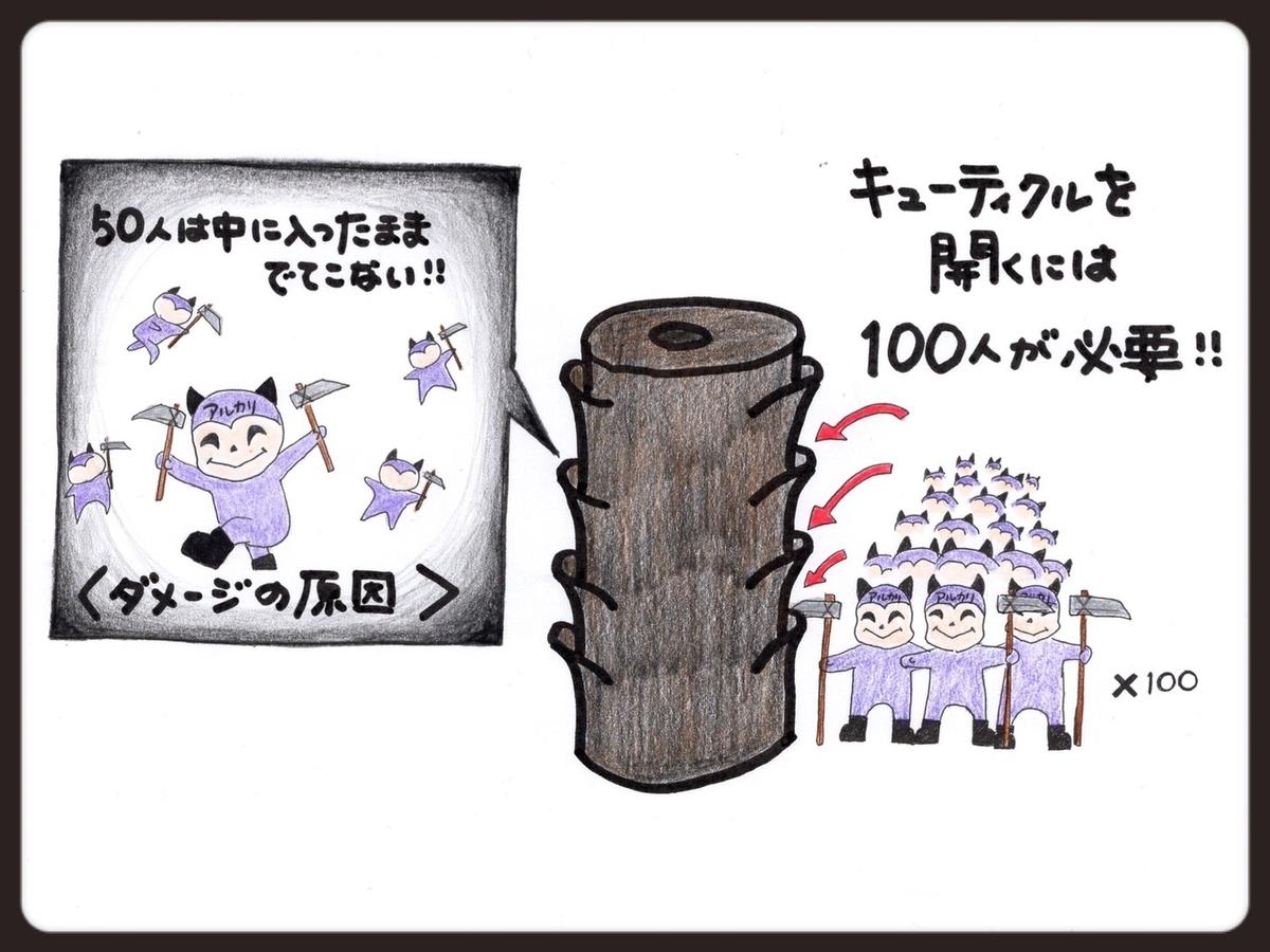 f:id:azkawagoe:20210830143827j:plain
