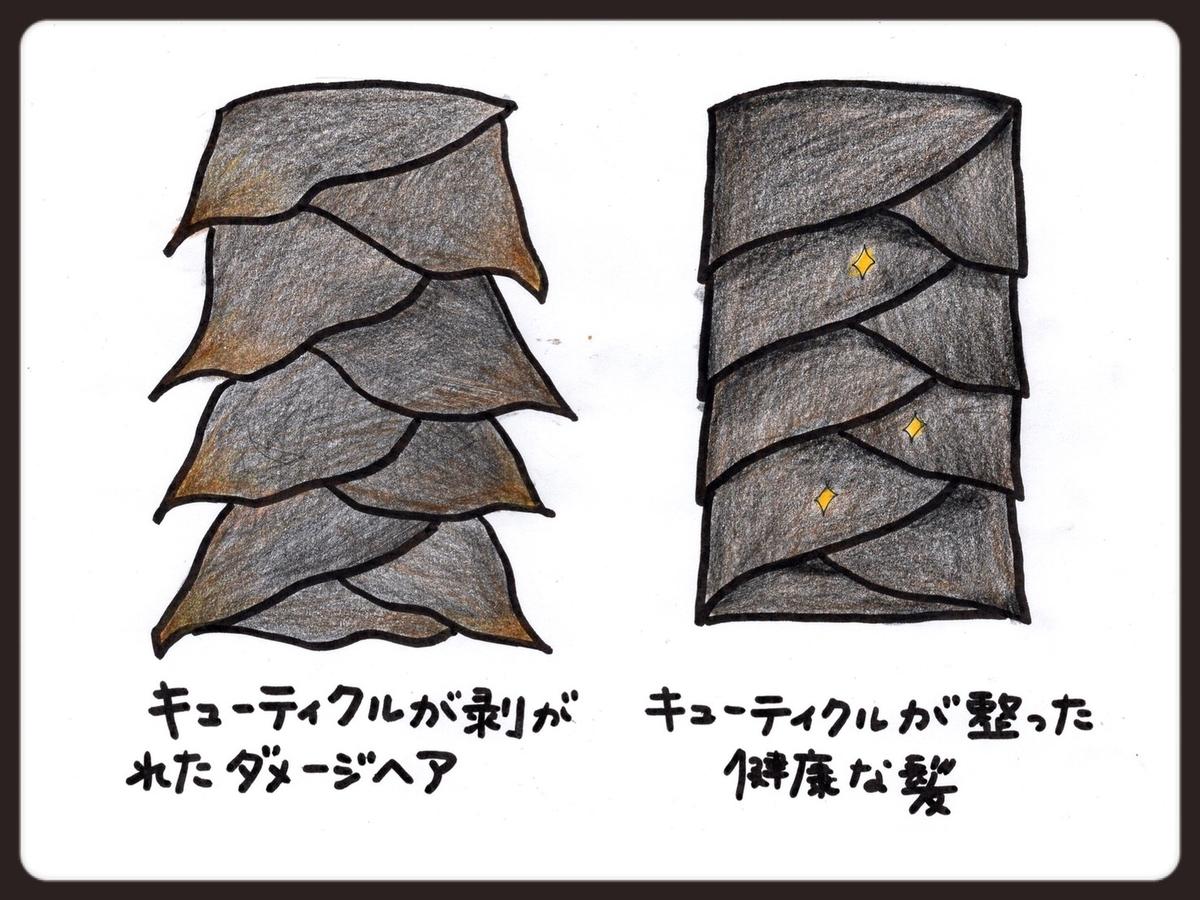 f:id:azkawagoe:20210831123722j:plain
