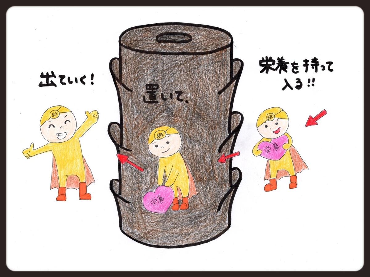 f:id:azkawagoe:20210831124840j:plain