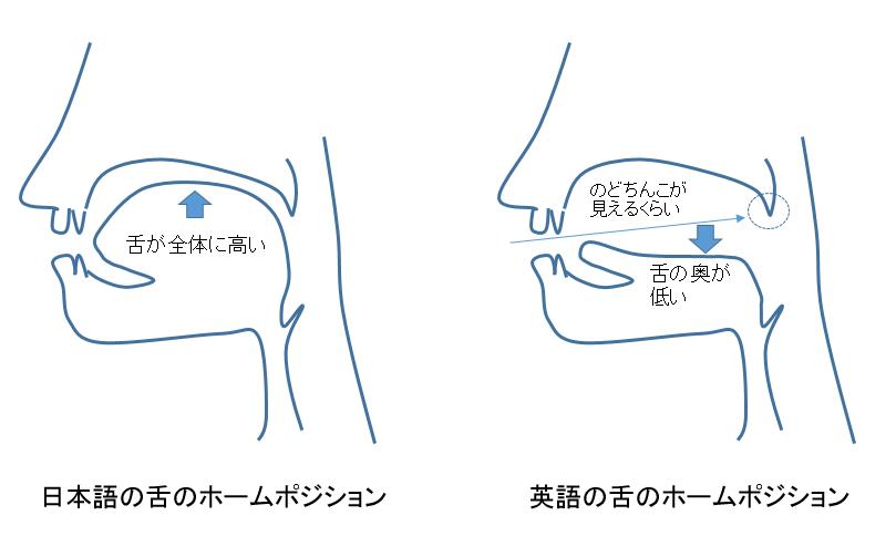 f:id:azu-ryugaku:20181216222000p:plain