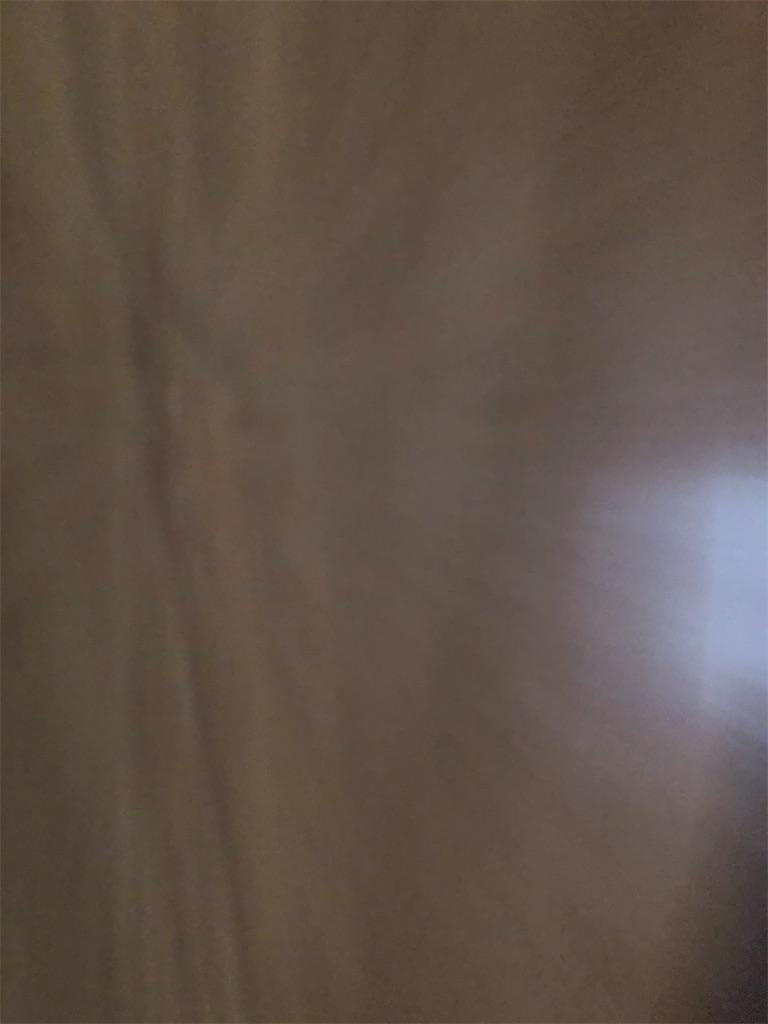 f:id:azuazuazukina:20201114171137j:image
