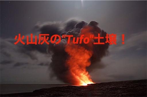 f:id:azuki-sommelier:20191117002614j:image