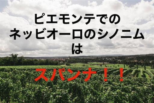 f:id:azuki-sommelier:20191119221042p:image