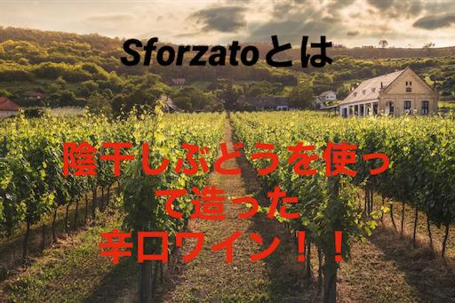 f:id:azuki-sommelier:20191119230358p:image