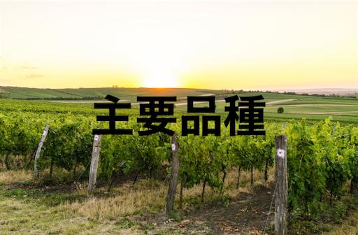 f:id:azuki-sommelier:20191127231956p:image