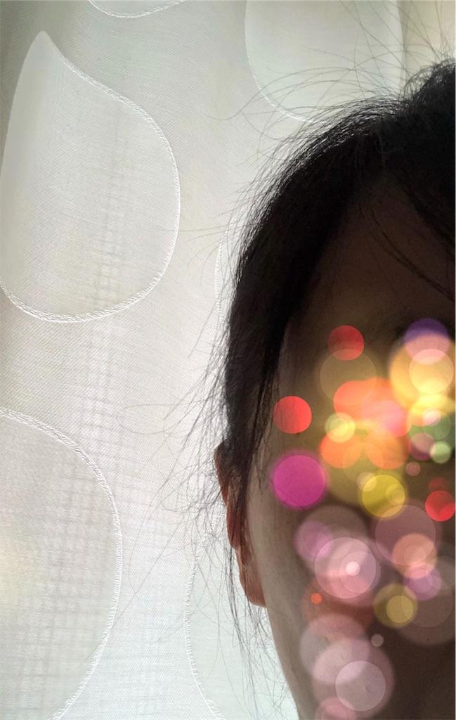 f:id:azukimamax:20190414100941j:image