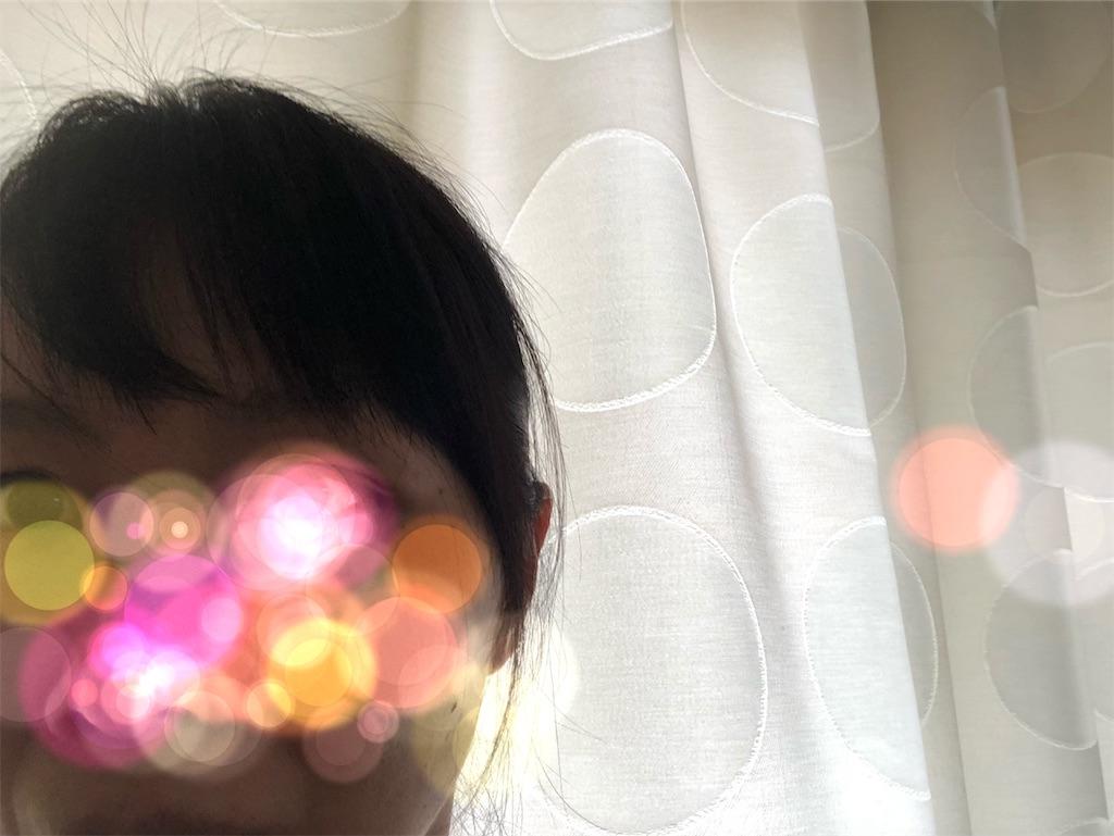 f:id:azukimamax:20190414100945j:image
