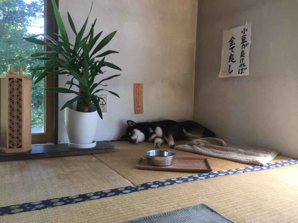 f:id:azukinotsukinowa:20160820195234j:plain