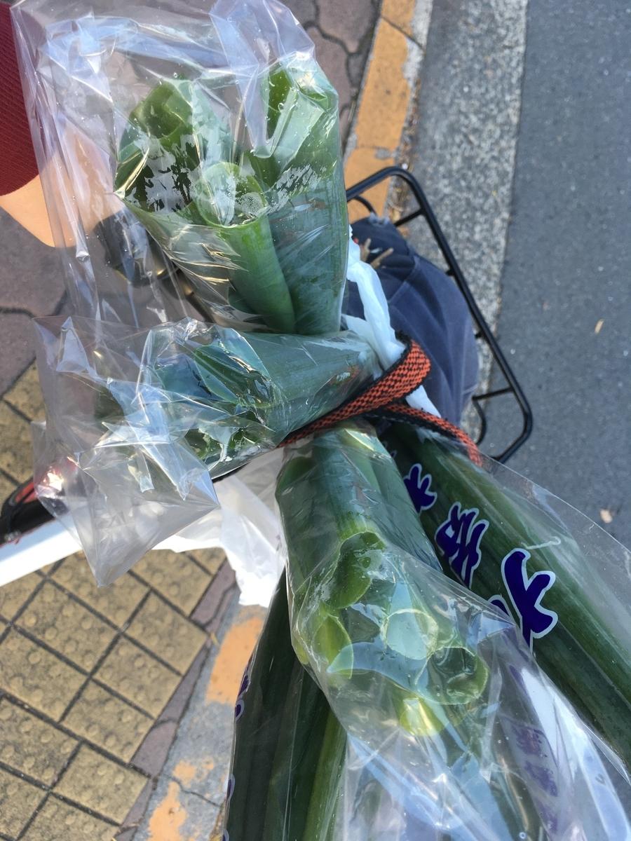 忘年会へ行く途中で買ったネギを積み込んだPiPPA自転車