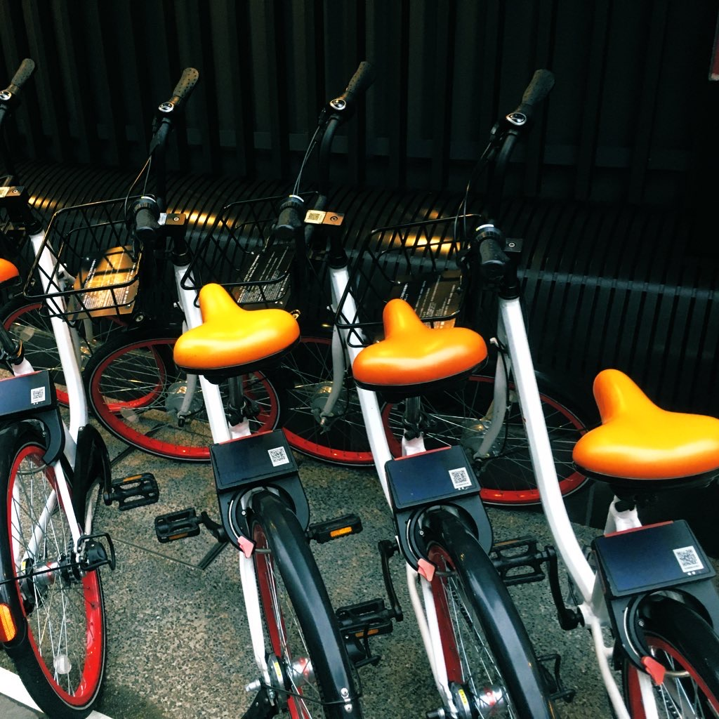 みかん色のサドルが目印のPiPPA自転車