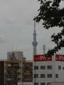 [東京スカイツリー][1日1スカイツリー]ちょっと場所ずれてみたけど建物が邪魔だった