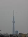 [東京スカイツリー][1日1スカイツリー]朝のほうがくっきり見えたなぁ