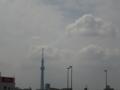 [東京スカイツリー][1日1スカイツリー]東の空はもっと晴れてた