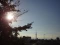 [東京スカイツリー][1日1スカイツリー]だんだん夏らしいくもりがなくなってきた