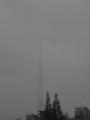 [東京スカイツリー][1日1スカイツリー]雨つらいから室内から撮った
