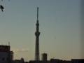 [東京スカイツリー][1日1スカイツリー]右端が謎のグラデーション