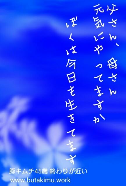 f:id:b-kobuta:20190317200607j:image