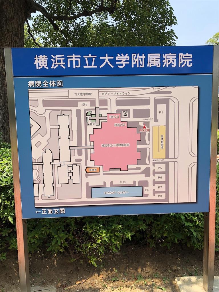f:id:b-oyaji-yume:20180718225530j:image