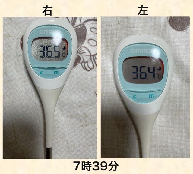 f:id:b-totochan:20210519153250p:plain