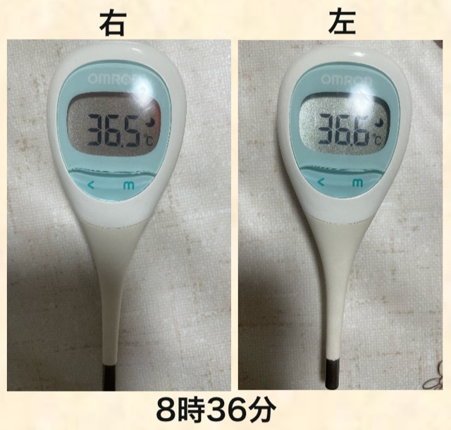 f:id:b-totochan:20210519160458p:plain
