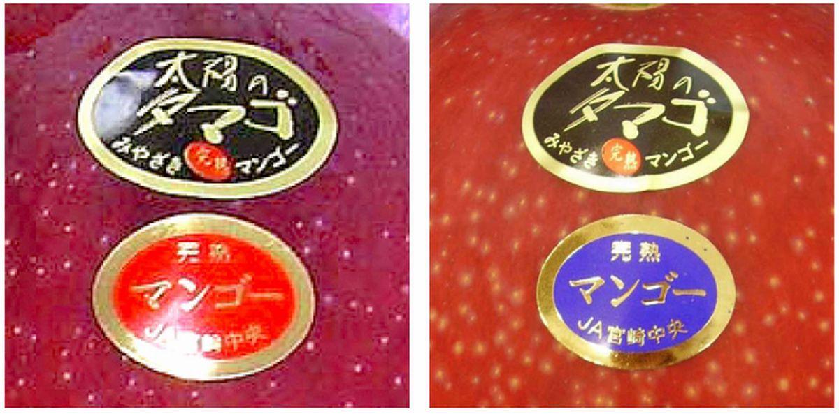 宮崎県産マンゴー太陽のタマゴには、2つの等級がある!